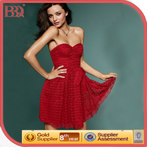 Fashion Lace Dress (W2883)