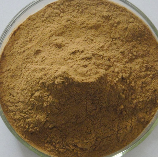 Senna Leaf Extract Powder