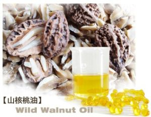 Wild Walnut Oil