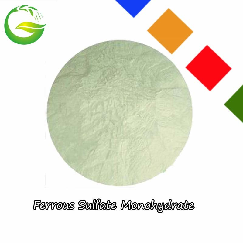Chemical Water Soluble Ferrous Sulfate Monohydrate