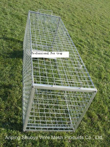 Coyote Metal Wire Mesh Cages